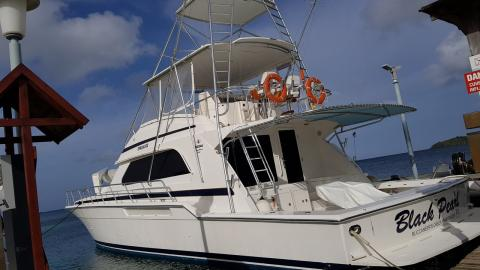 Bertram 60 : At the pontoon