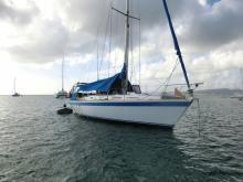Wauquiez Centurion 36 : Anvhorage in Martinique